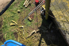 Expert Tree Surgeon In Essex (13)