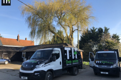 Expert Tree Surgeon In Essex (3)