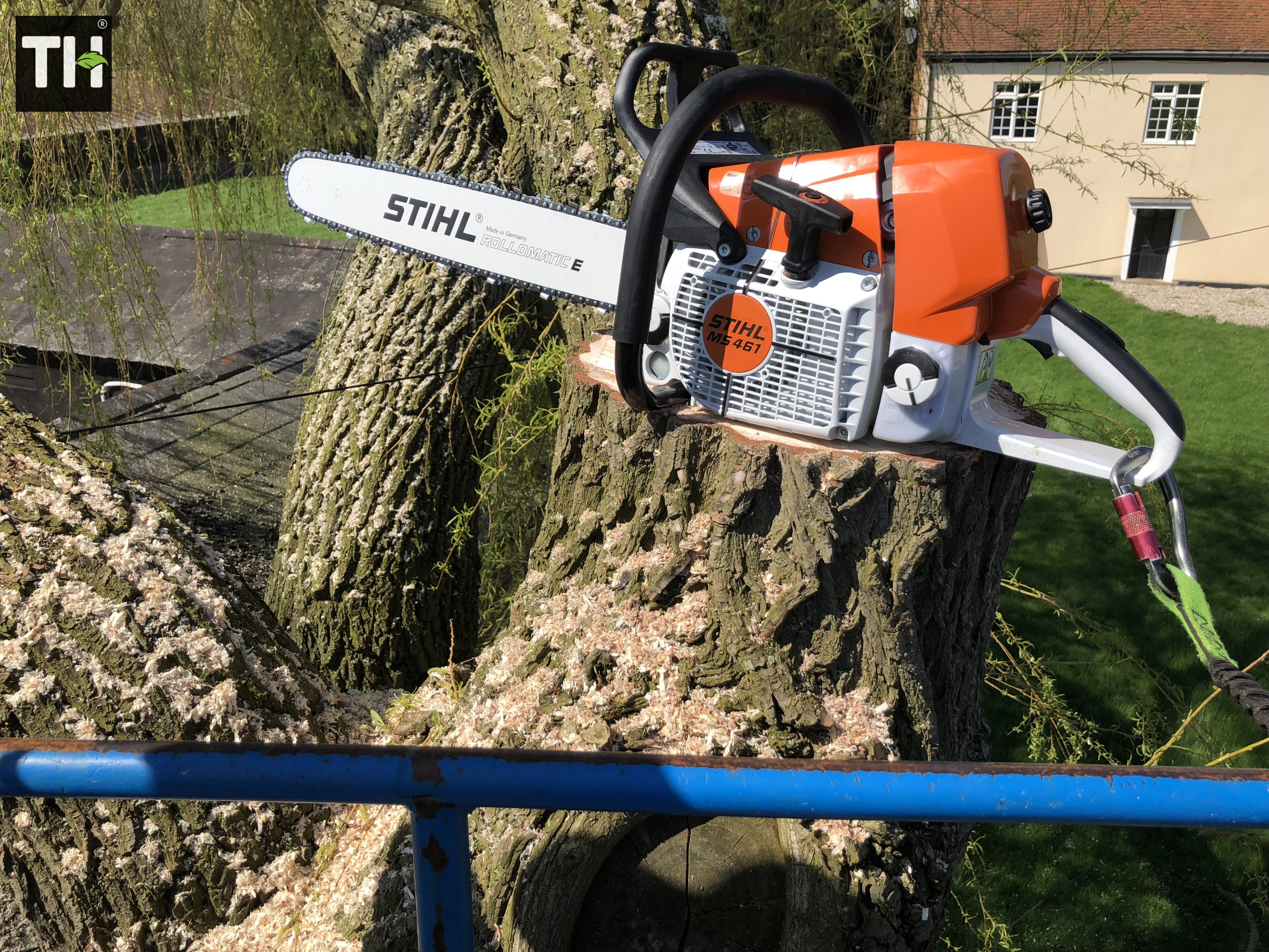 Expert Tree Surgeon In Essex (16)