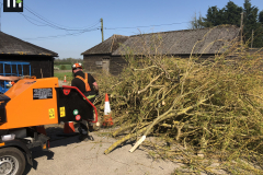 Expert Tree Surgeon In Essex (30)