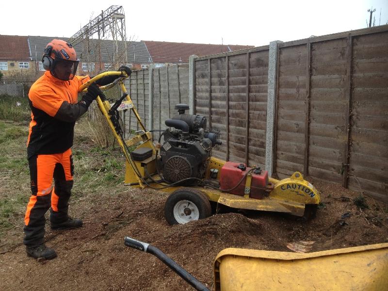 cost of stump grinder machine