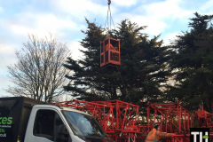 Tree pruning with a crane in stanford le hope (1)