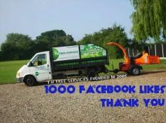 1000 fb likes
