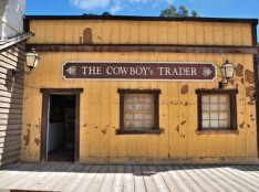 Cowboy traders can cost you in more ways than one, and that includes cowboy tree surgeons.